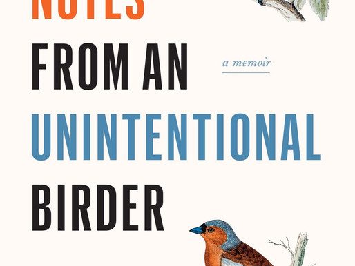 Field Notes from an Unintentionally Birder