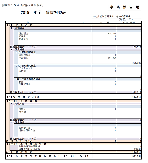 2019年度 貸借対照表.png