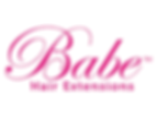 babe extension logo.png