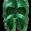 Thumbnail: Ana Terra Verde Verde