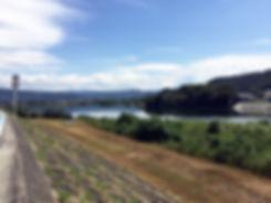 TSUGU DESIGN | 和歌山 | 岩出市清水のリノベーション