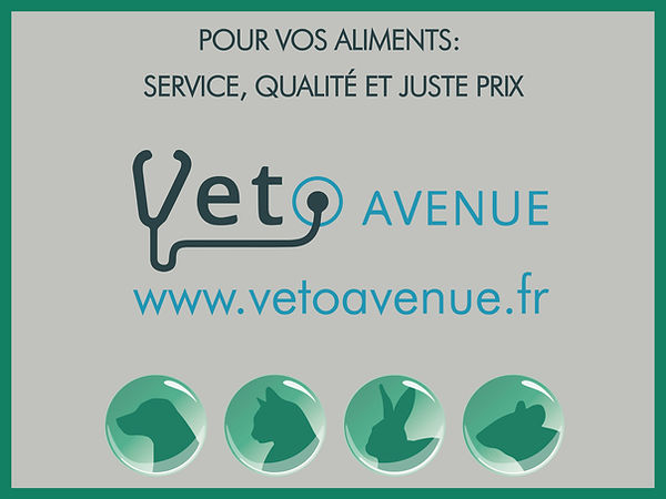 Affiche-aliments-02.jpg