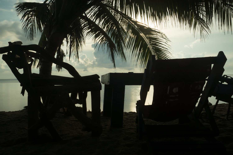 ron visser fotografie-tropenbank