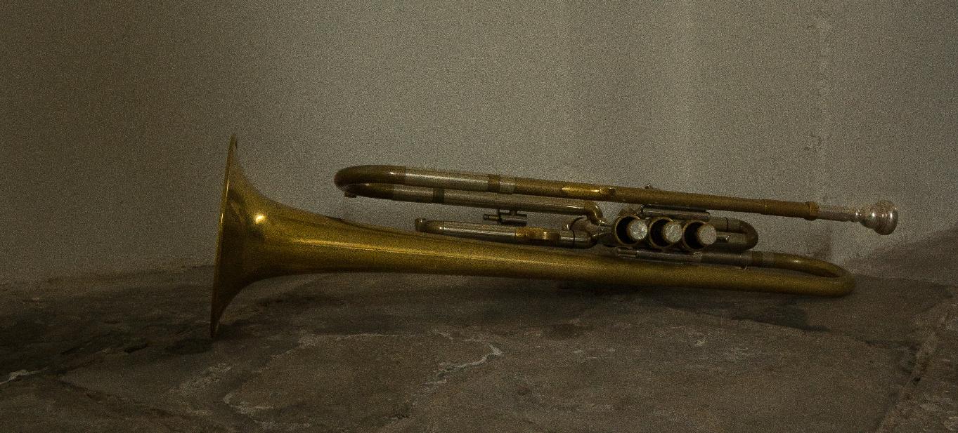 ron visser fotografie-trompet
