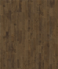 Oak Kernel.jpg