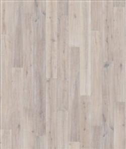 Oak Oyster.jpg