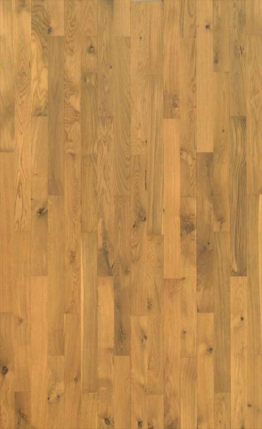 Nordic Oak - Variation.jpg
