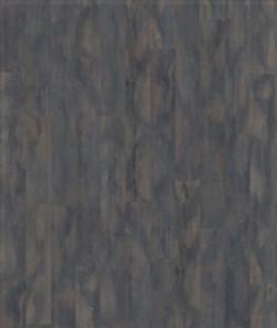 Oak Vecchio.jpg