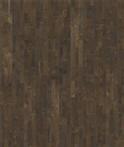Oak Soil.jpg