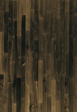 Black Oak - Harmony.jpg