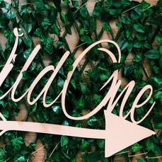 Wild One.JPG