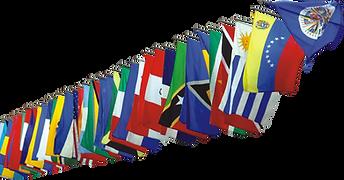 Bandera 1.png
