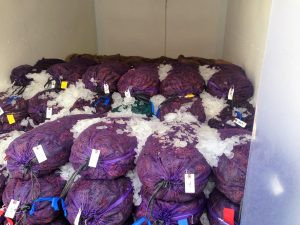 crawfish-bags-300x225.jpg
