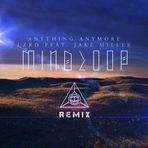Mindloop remix.jpg
