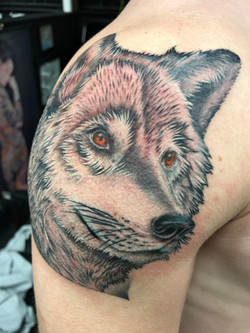 wolf color tattoo