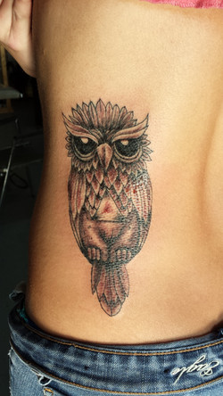 owl with triangle