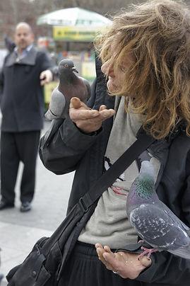 man feeding pidgeion