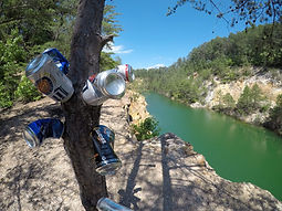 tree with beer cans on river