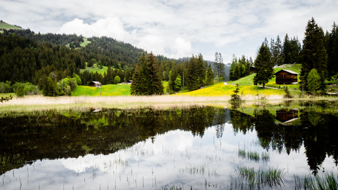Pays d'en Haut, Switzerland