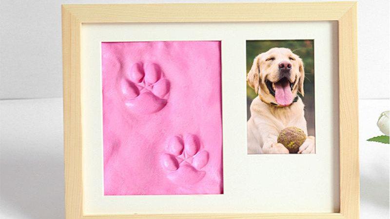 Pets Paw Prints Keepsake Photo Frame Memorial Clay Imprint Kit for Dog Pet Lover