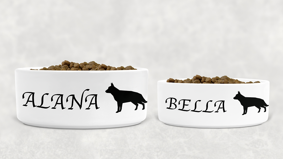 Personalised Pet Bowl (Large & Medium)