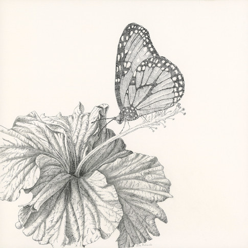 Hibiscus and Monarch Butterfly