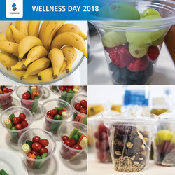 Wellness Day Health Food Treats
