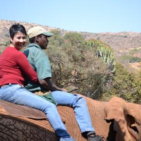 Elephant Sanctuary hartbeespoort