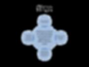 Steamersclubmodel4_edited.png