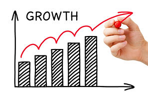 We develop and improve your business processes and help your business grow.