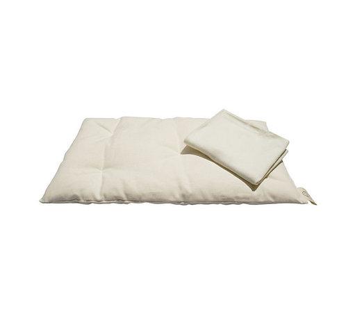 Organic Cotton Toddler Pillow & Pillowcase, Natures Sway