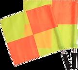arbitre drapeaux.png