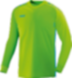 MaillotGardien Competition Jako.png