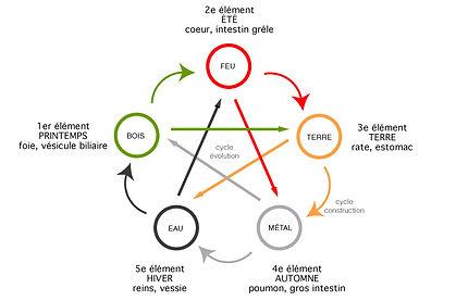 cicle-5elements MTC.jpg
