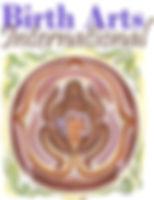bai_logo_small.jpg