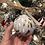 Thumbnail: Glass Ornament - Neutral 1