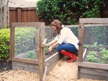 Gardening 101 // The Basics