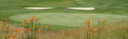 golf-millpond.jpg