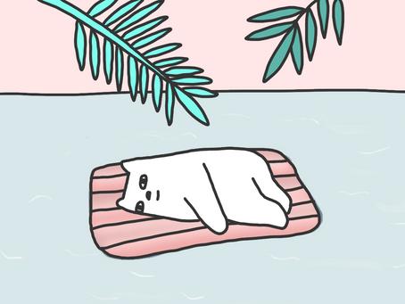 [디지틀 조선일보] 이동 최소화하고 안전한 휴가를 원하는 이들을 위한 '앱 서비스'