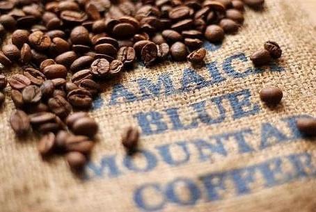 牙買加藍山咖啡