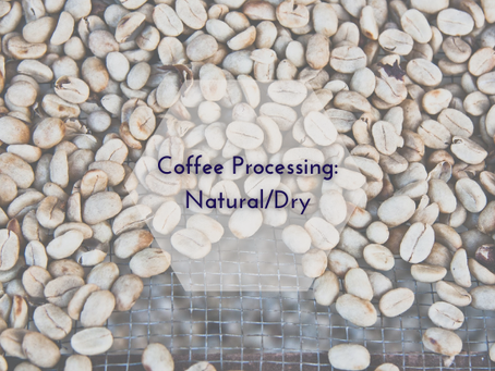 Coffee Processing: Natural/Dry