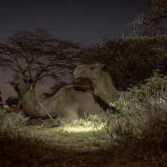 North Kenya
