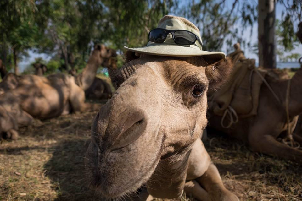 Rob A camel and hat.jpg