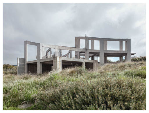 From the Series, Abandoned Nest, Guardian