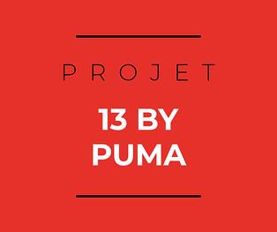 Icone-Projet-13-by-puma.jpg