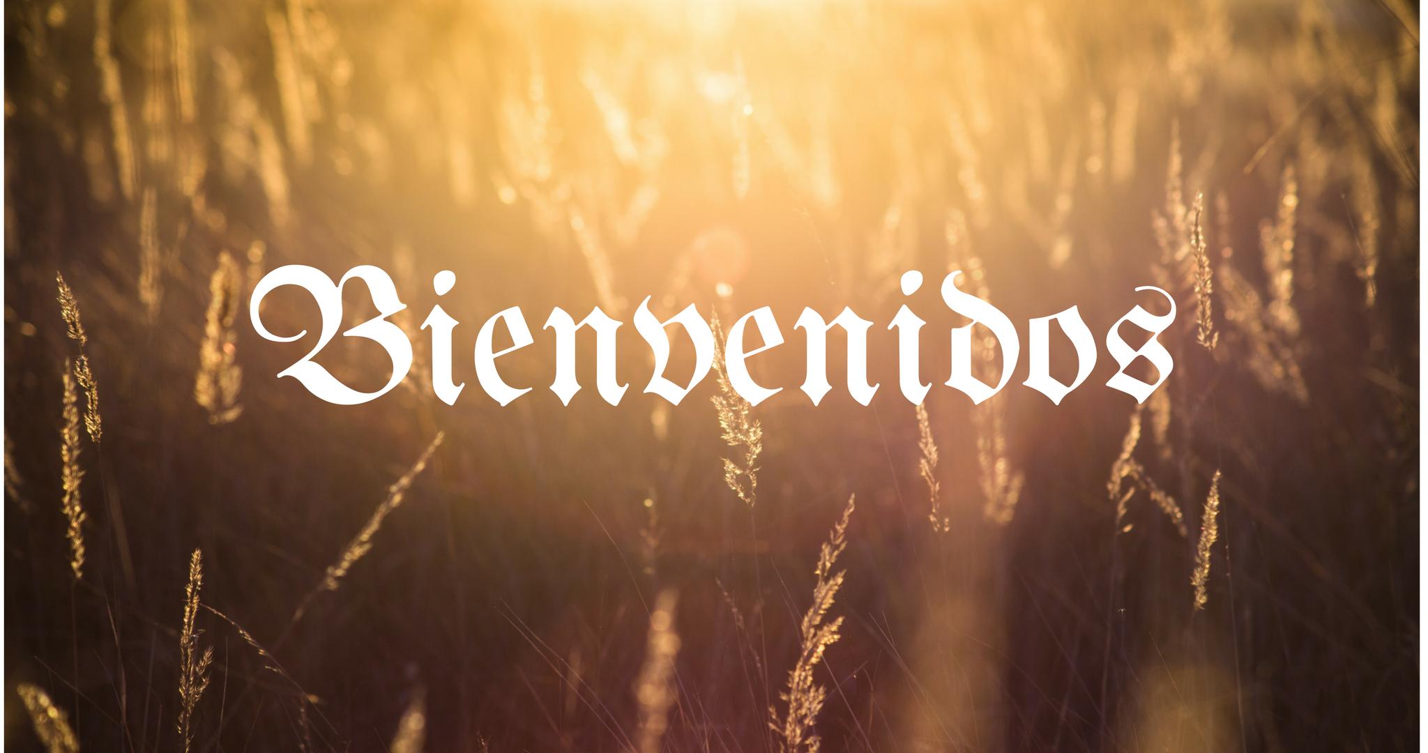 Bienvenidos.png