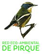 Logo Red Eco-Ambiental de Pirque-01.png