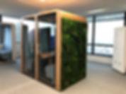 Green wall Quatro