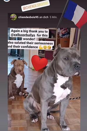 Screenshot_20210204_150852_com.instagram