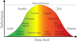 Sports Performance and Pressure